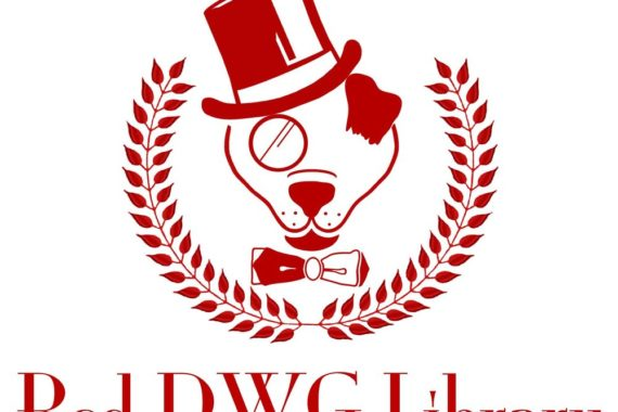 Business Before Hours- Red DWG, LLC